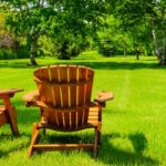 How To Keep Your Lawn Green And Neat With Low Effort